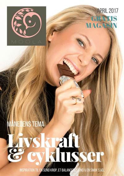 Klik her for at læse MOOLA magasinet april 2017 - tema om livskraft & cyklusser