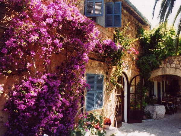 Mindfulness, yoga, meditation kursus/retreat på Mallorca